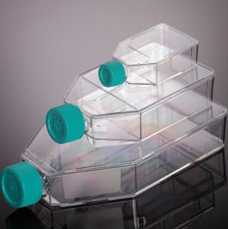Disposable Plasticware